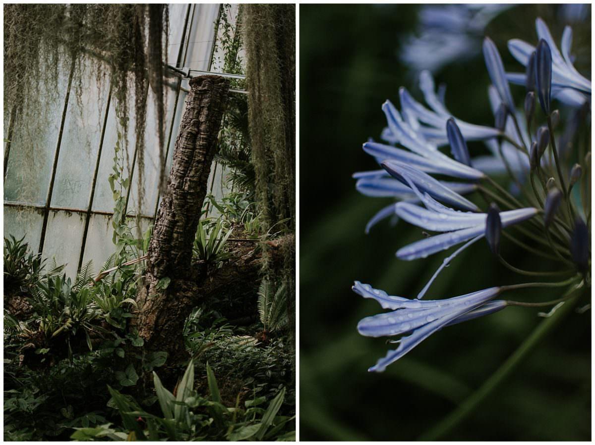 Royal Botanic Garden Edinburgh photography