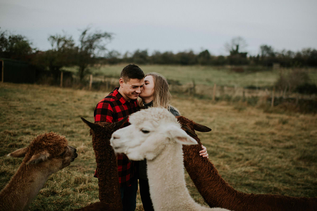Engagement photoshoot on the alpaca farm in Pentland Hills, Edinburgh
