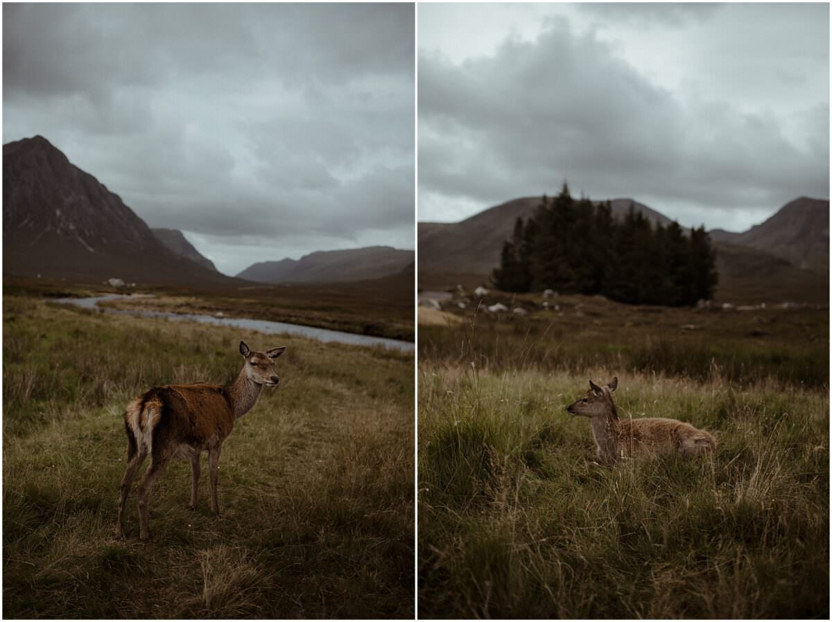 Scottish highlands landscapes - Scotland photographer